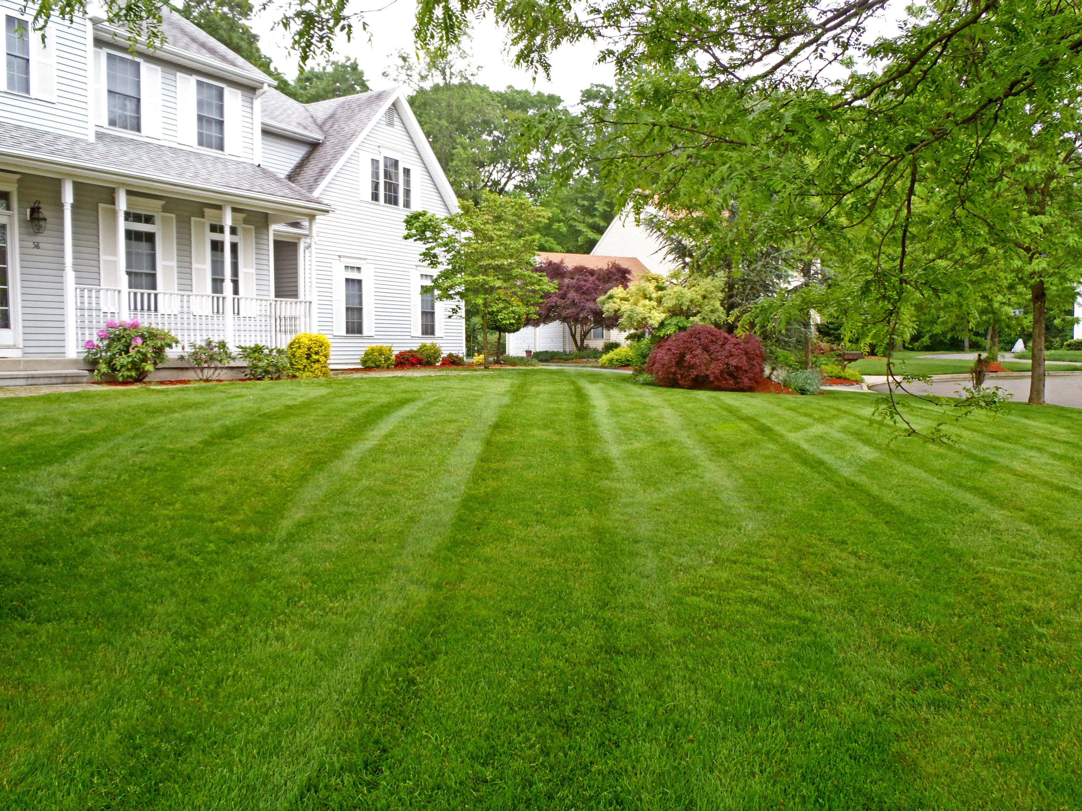 Book Your 2018 Lawn Care Package Now!